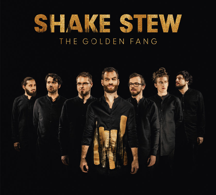 ShakeStew-Vinyl-FIN.indd